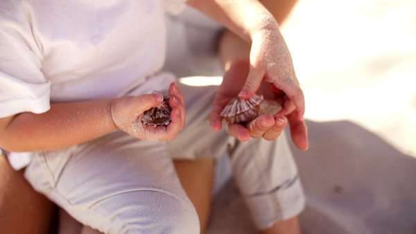 Mother collecting shells son beach Royalty-free stock video