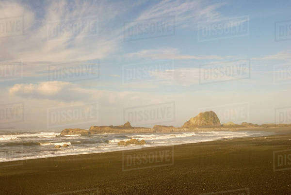 North America, USA, WA, Olympic National Park.  Kalaloch Beach 4 known for tidepools and beachcombing. Royalty-free stock photo