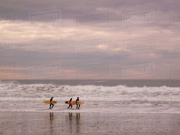 USA, Oregon, Cape Kiwanda State Natural Area. Three surfers with boards walk along shoreline. Royalty-free stock photo