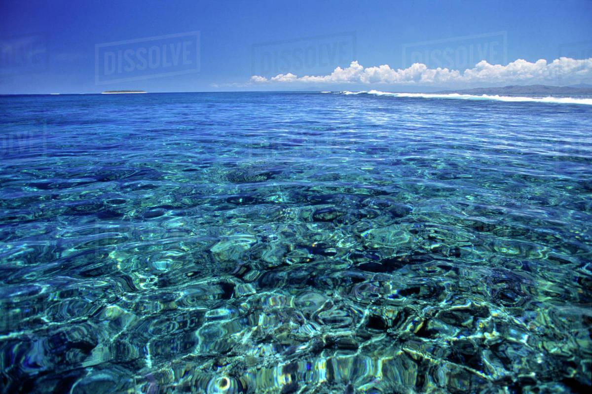 Fiji Islands Tavarua This Coral Reef On Tavarua Is Visible D256 30 693