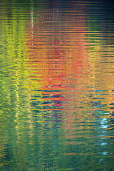 Fall color trees reflected in rippled water Royalty-free stock photo