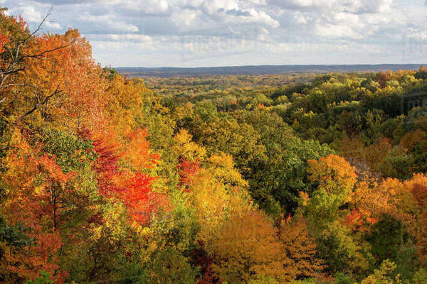 Hills are filled with autumn colors at Brown County State Park near Nashville, Indiana, USA Rights-managed stock photo