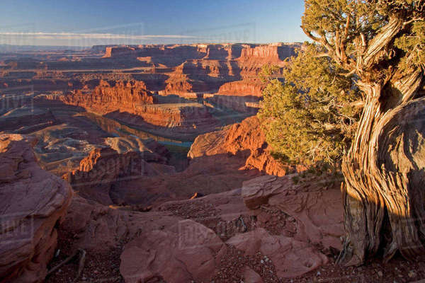 USA, Utah, Dead Horse Point State Park. Sunrise on the park. Rights-managed stock photo