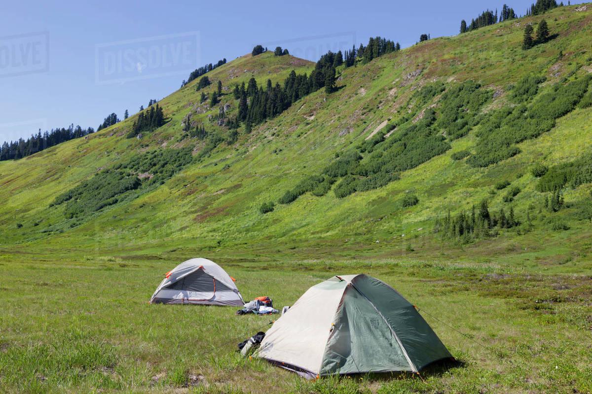 Usa Washington State Henry M Jackson Wilderness Meander Meadow