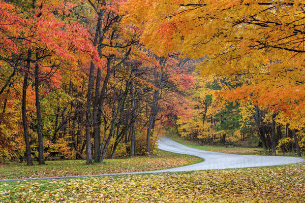 Autumn color at Brown County State Park near Nashville, Indiana, USA Rights-managed stock photo