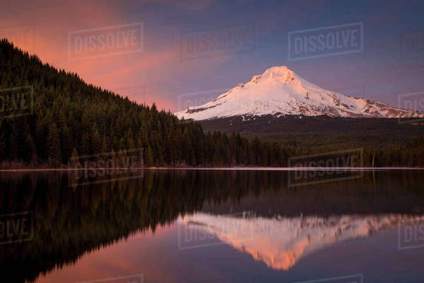 Setting sunlight on Mount Hood from Trillium Lake, Cascade Mountains, Oregon, USA Rights-managed stock photo
