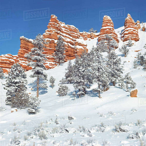 USA, Utah, Bryce Canyon National Park. Snow-covered sandstone bluffs juts into the blue sky in Bryce Canyon National Park, Utah. Rights-managed stock photo