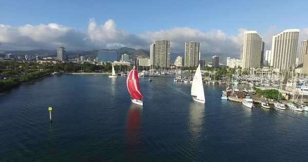 Ala Moana Park, Ala Wai Yacht Harbor, Waikiki, Honolulu, Oahu, Hawaii Rights-managed stock video