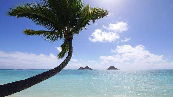 Mokulua Islands, Lanikai, Kailua, Oahu, Hawaii Rights-managed stock video