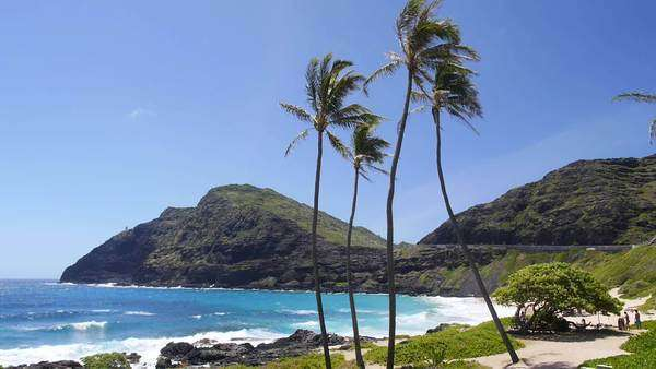 Makapuu Beach, Oahu, Hawaii Rights-managed stock video