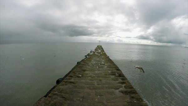 POV Seascape with stone pier and seagulls Royalty-free stock video