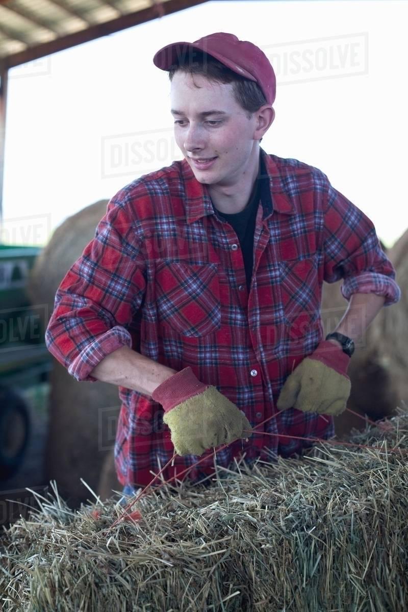 2c9dc3bdadec Young farmer lifting straw bale - Stock Photo - Dissolve