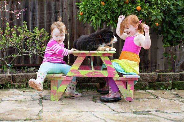 Two young sisters sitting on garden bench with pet dog Royalty-free stock photo