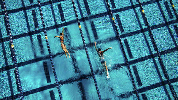 Overhead view of swimmers in pool Royalty-free stock photo