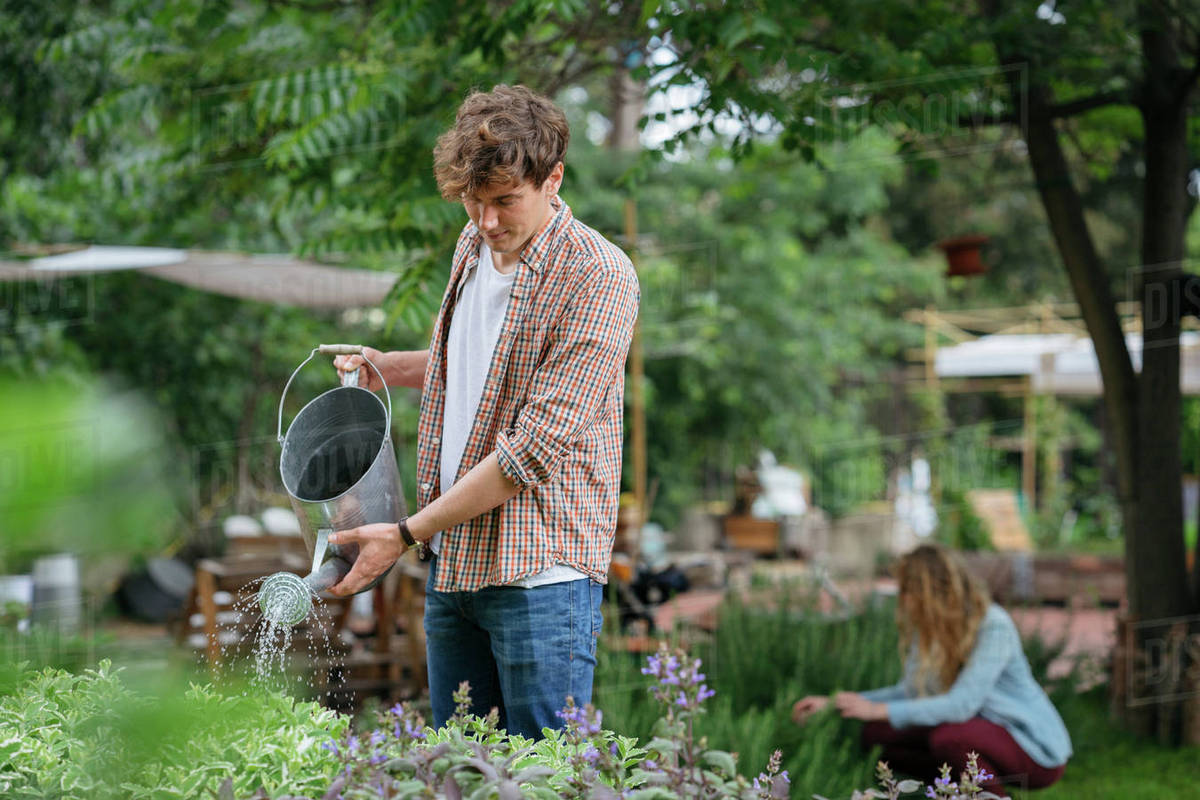 Young Man And Woman Tending To Plants In Urban Garden Man