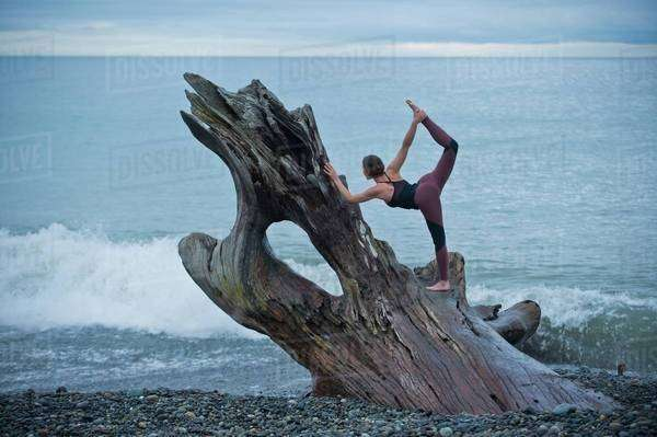 Mature woman practicing yoga position on large driftwood tree trunk at beach Royalty-free stock photo