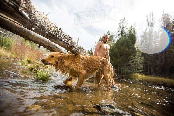 Young man and dog paddling in river, Lake Tahoe, Nevada, USA Royalty-free stock photo