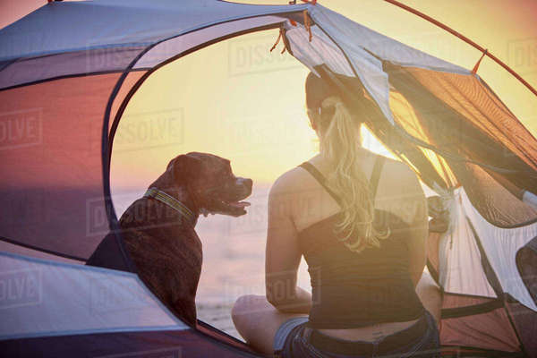 Woman and dog inside tent Royalty-free stock photo