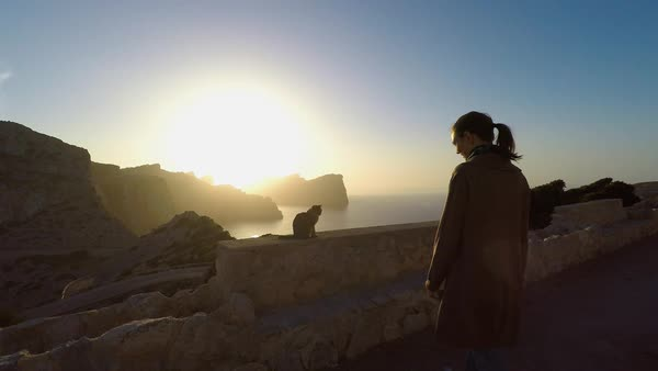 Wide shot of medium point-of-view shot of slow motion woman stroking stray cat and coastline in background Royalty-free stock video