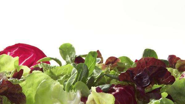 Mixed salad leaves Royalty-free stock video