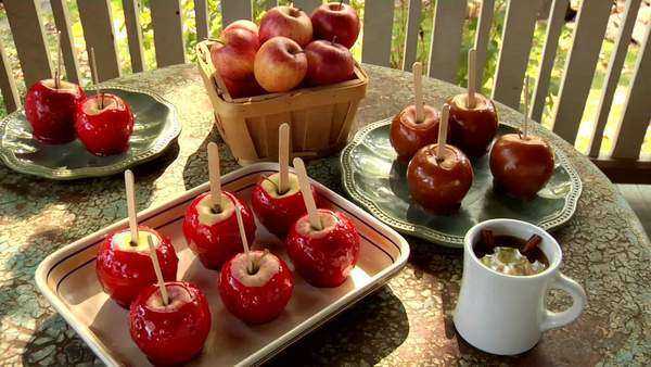 Toffee apples standing on a table out of doors Royalty-free stock video