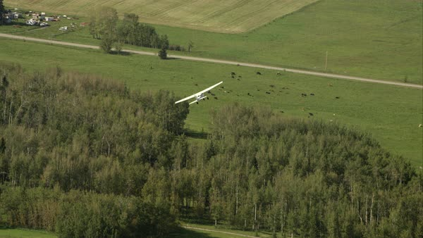 A small crop plane flying over Alberta farm land and flying out of frame Royalty-free stock video