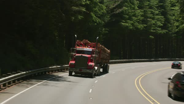 Logging truck driving on highway in Oregon forest. Royalty-free stock video