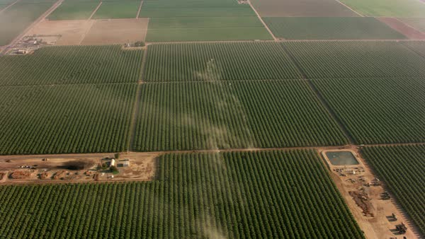 Aerial shot of orchards with tractors making dust.   Royalty-free stock video