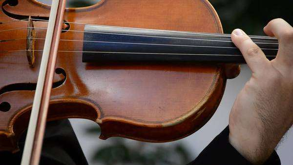 Concert of violins viola and violoncello Royalty-free stock video