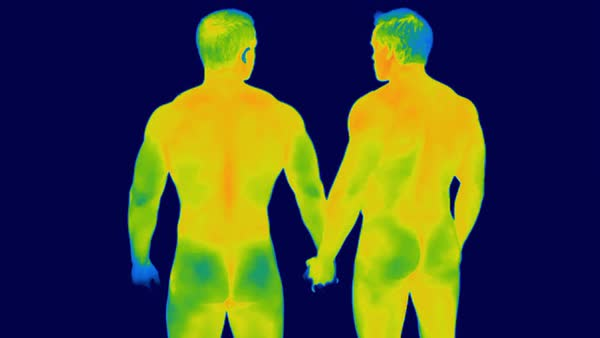 Two men holding hands. Thermographic footage of a rear view of two nude men holding hands. Rights-managed stock video