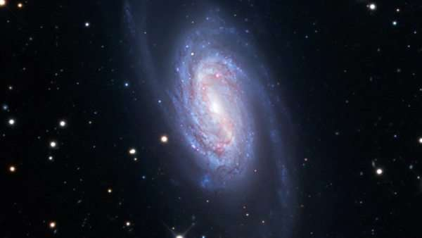 Barred spiral galaxy (NGC 2903), optical image. Rights-managed stock video