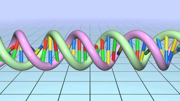 DNA molecule. Rights-managed stock video