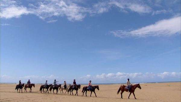 Long shot pan of a group of people riding horses on the beach at St Lucia Rights-managed stock video