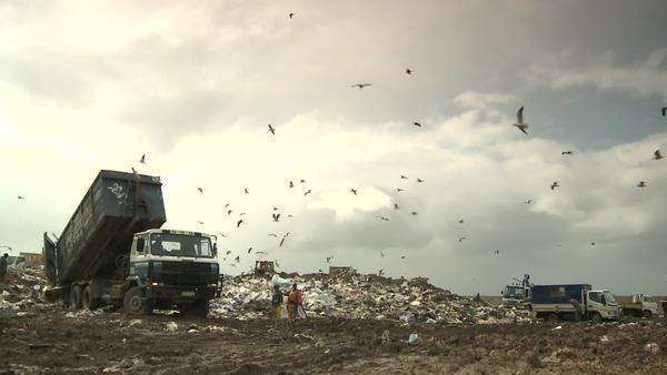 Long shot of trucks, bulldozers, seagulls and people on landfill Rights-managed stock video