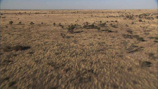 Aerial shot of the Makgadikgadi Pan Rights-managed stock video