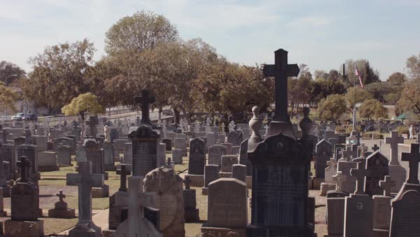 An old cemetery with ancient gravestones. Royalty-free stock video