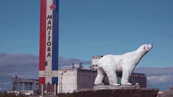 Polar bear statue stands near a sign advertising Churchill, Manitoba, Canada. Royalty-free stock video