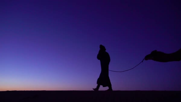 Man leading a camel across a dune in silhouette. Royalty-free stock video
