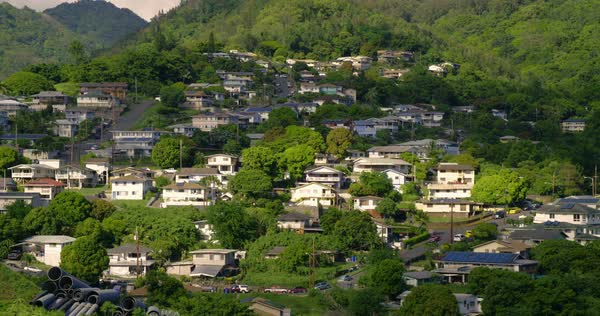 Houses are nestled on a lush hillside near Honolulu Hawaii. Royalty-free stock video