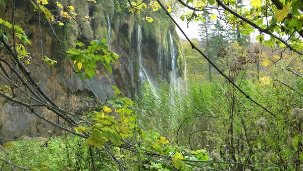 View through vegetation to beautiful waterfall at Plitvice National Park in Croatia. Royalty-free stock video