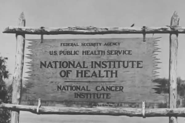 Scientists in United States Public Health Service laboratories research industrial hygiene, in 1943. Royalty-free stock video