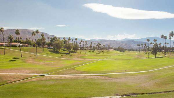 Hyperlapse of a field with palm trees in Palm Springs, California Royalty-free stock video