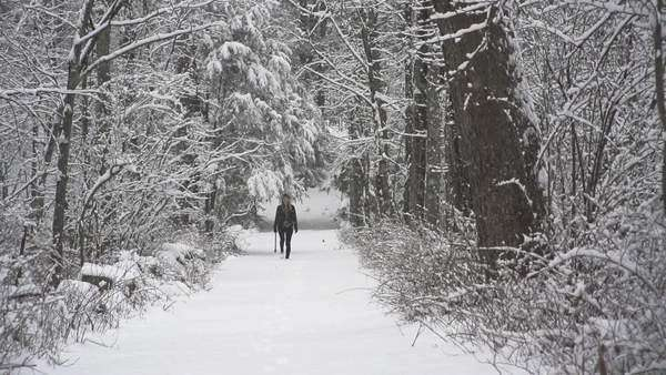 Young woman walking down snowy path with axe Royalty-free stock video