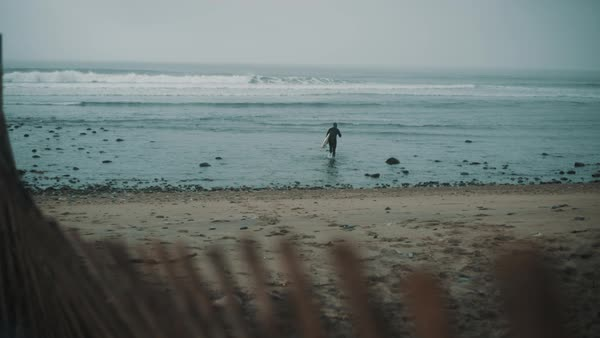 Surfer walks into ocean with fence in foreground Royalty-free stock video
