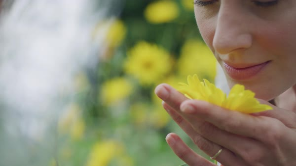 A young woman smelling daisy and smiling Royalty-free stock video