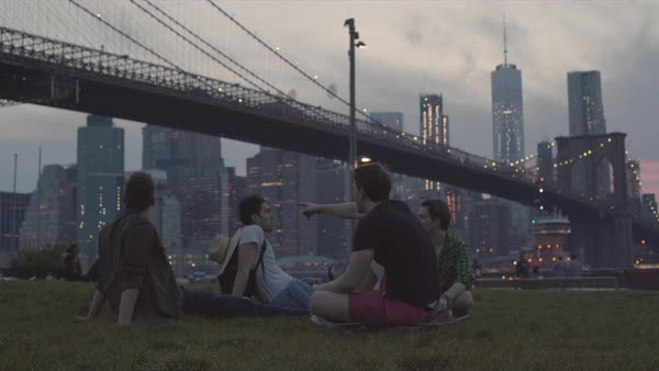 Hand-held shot of four young men sitting in a park across the river from New York Royalty-free stock video
