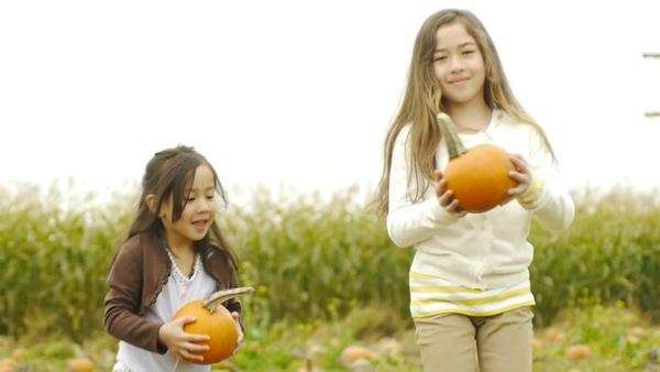 Little girls run through pumpkin patch and hold up their pumpkins and smile for camera Royalty-free stock video