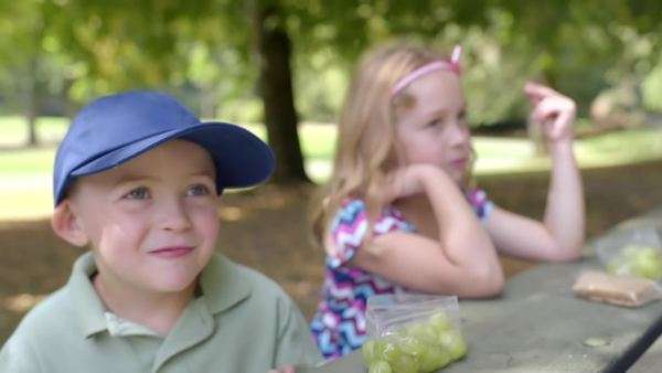 Cute little kids, brother and sister, eat healthy picnic in park together, they laugh and talk Royalty-free stock video