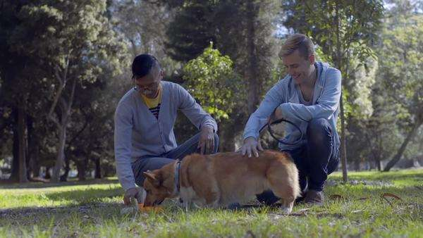 Happy gay couple pet their corgi, while he drinks water from dish, in the park Royalty-free stock video