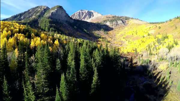 Amazing fall colors in this aerial fly back from Mt Timpanogos in the Rocky Mountains in Utah Royalty-free stock video
